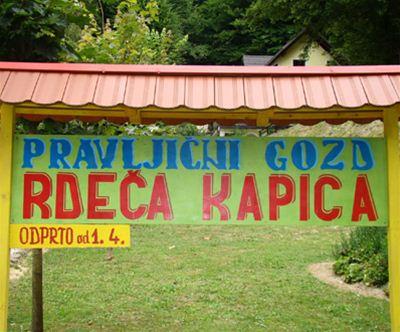 Otroška vstopnica za pravljicni gozd Rdeca kapica