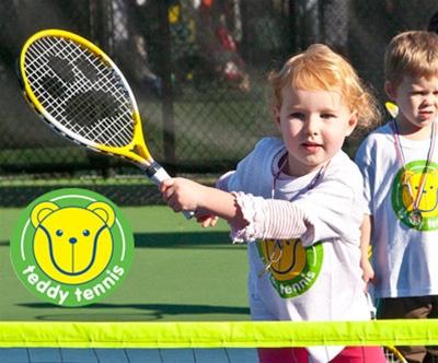 Tedi tenis