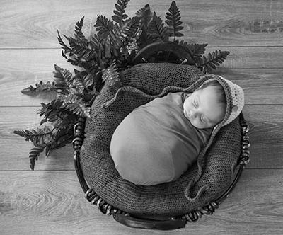 Paket fotografiranja parov, nosecnic ali družine