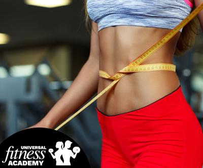 fitnes program