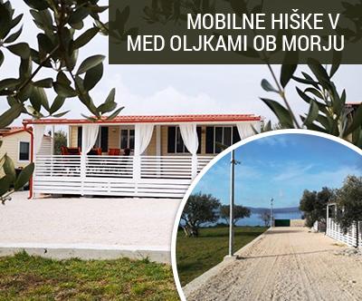 mobilne hiške kamp Trstike