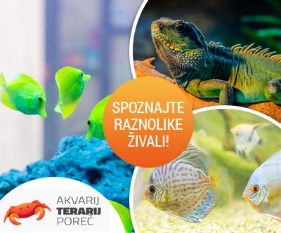 Družinska vstopnica za Akvarij & Terarij Porec