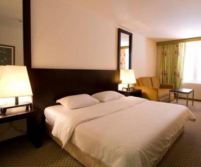 hotel International, rab