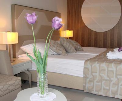 Hotel Terme 4*, Catež