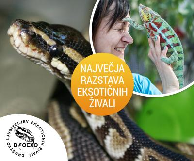 Vstopnica za 26. Bioexo razstavo eksoticnih živali