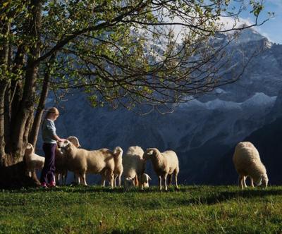 turistična kmetija šenkova domačija